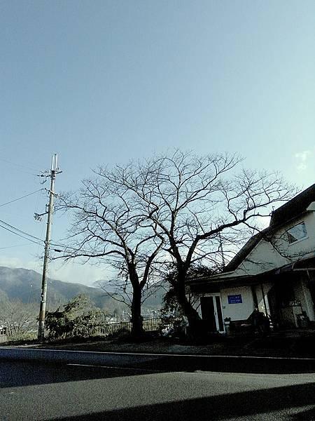 2011-京都之旅-第六天-前往龜岡-02.jpg