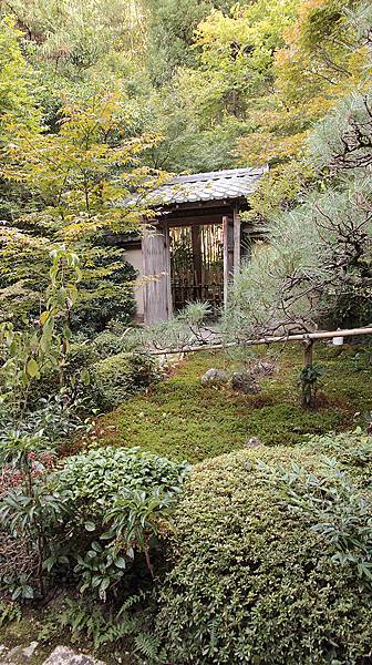 2011-京都之旅-第六天-嵯峨野 嵐山-厭離菴-11.jpg