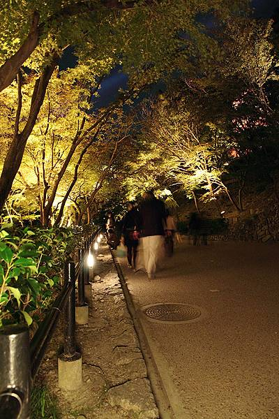 2011-京都之旅-第七天-夜訪清水寺-13.jpg