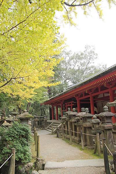 2011-京都之旅-第八天-春日大社-05.jpg