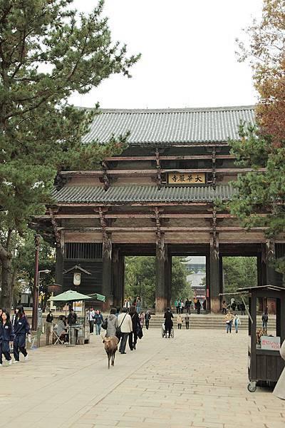 2011-京都之旅-第八天-東大寺-00.jpg