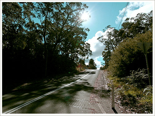 Sydney-Blue Mountain-07.jpg