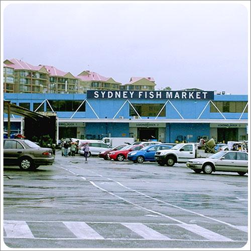 Sydney-Fish Market-01.jpg