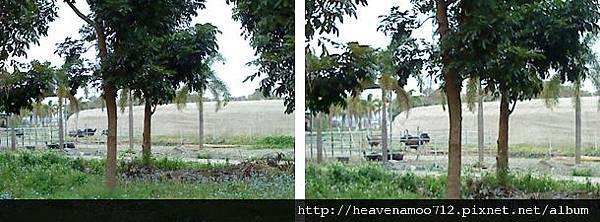 201201231-1.jpg