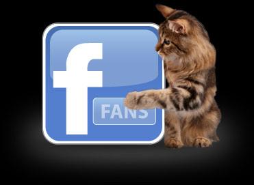 Facebook-.jpg