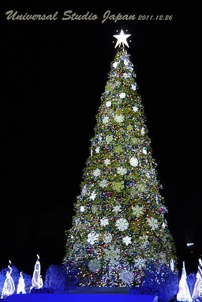 聖誕樹(夜晚)