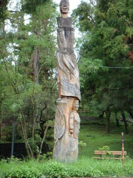 這塊是木頭,非常高
