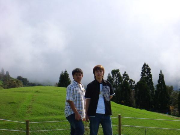 清境農場也就叫做青青草原