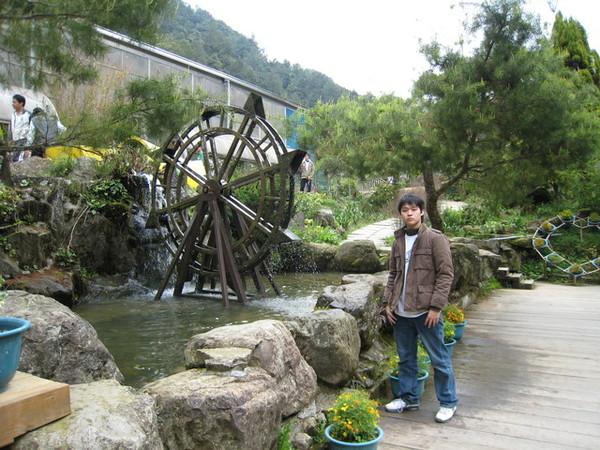 杉林溪遊樂區的漂亮水車
