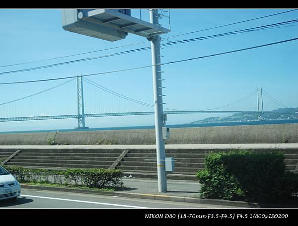DSC_6861.jpg
