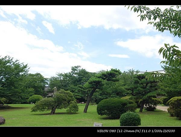 DSC_7003.jpg