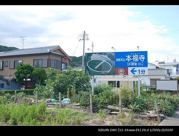 DSC_7124.jpg