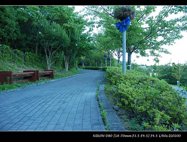 DSC_7210.jpg