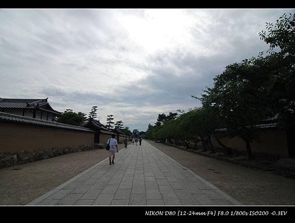 DSC_7502.jpg