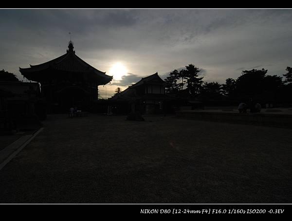 DSC_7662.jpg