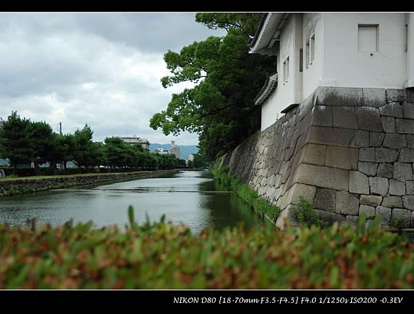 DSC_7981.jpg