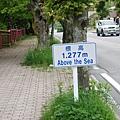 DSC_7948.JPG