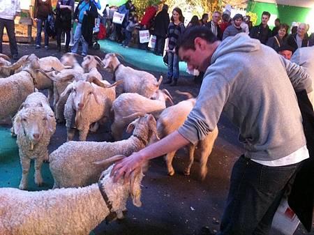 法國西南部農產品博覽會