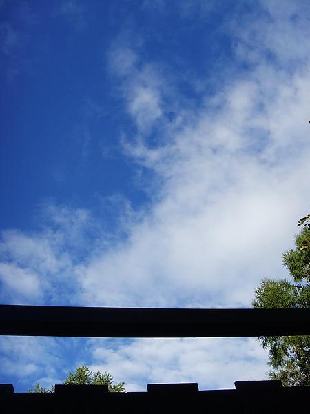 0917-361泡早湯時..抬頭看到的景色.jpg