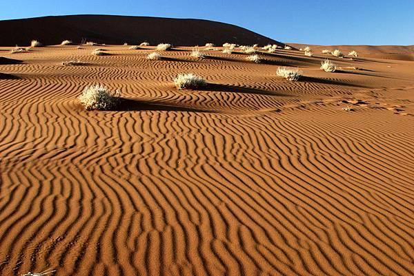 非洲 納米比亞的紅沙漠