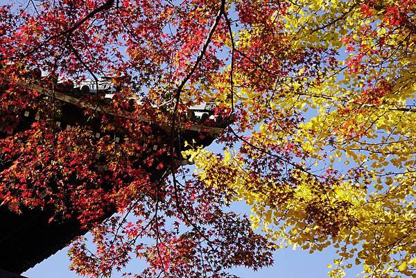 日本 京都 南禪院