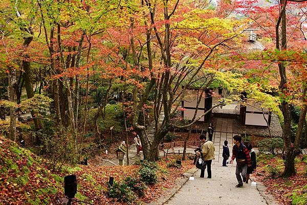日本 京都 常寂光寺