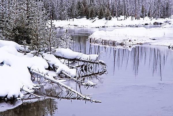 美國 黃石公園 冬季