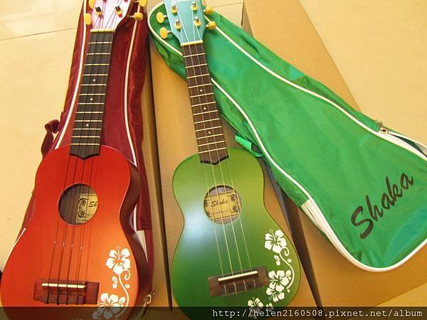 102年新年新禮物........一個很夯的樂器