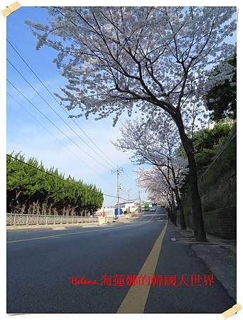 CC-022.JPG
