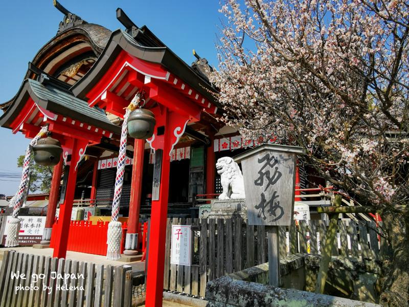 戀木神社-29.jpg