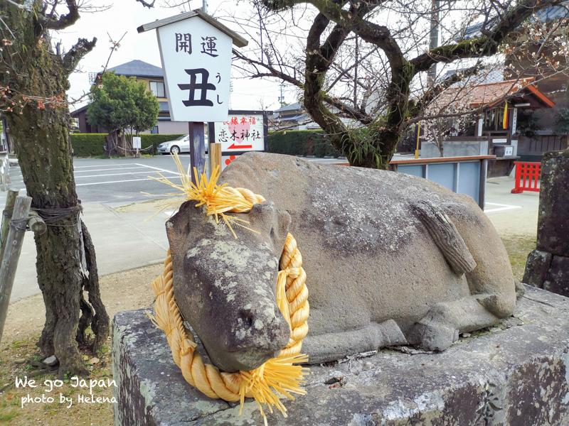 戀木神社-35.jpg