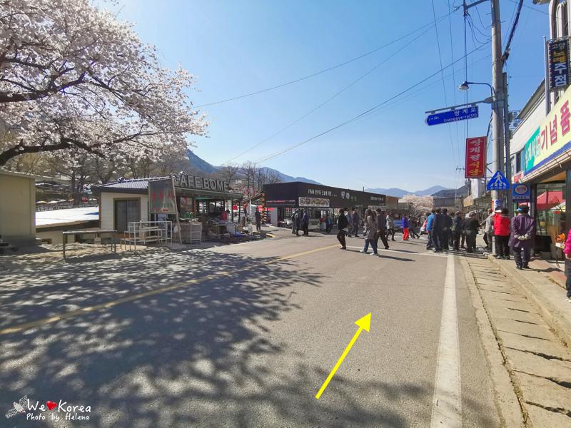十里櫻花路-06.jpg