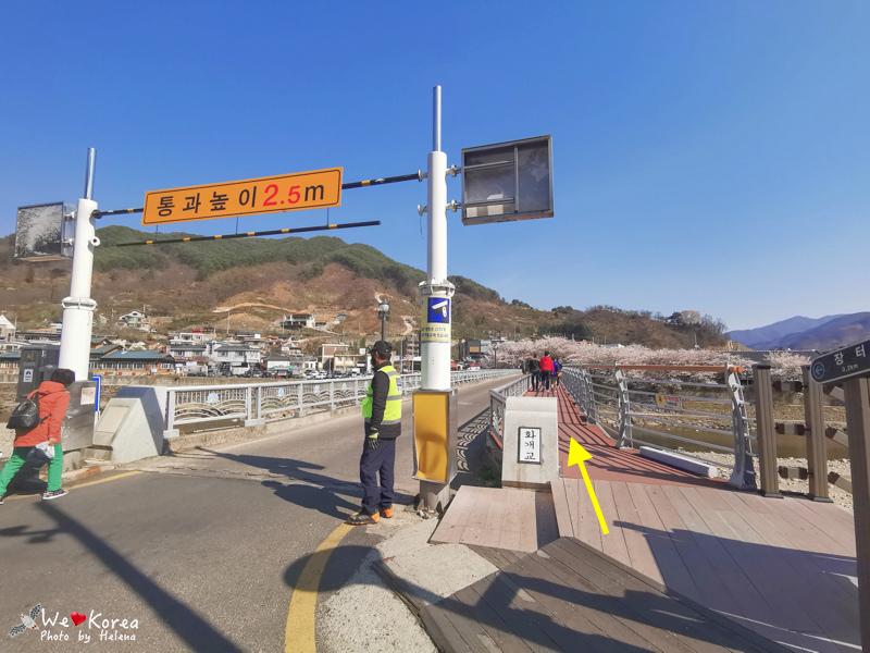 十里櫻花路-38.jpg