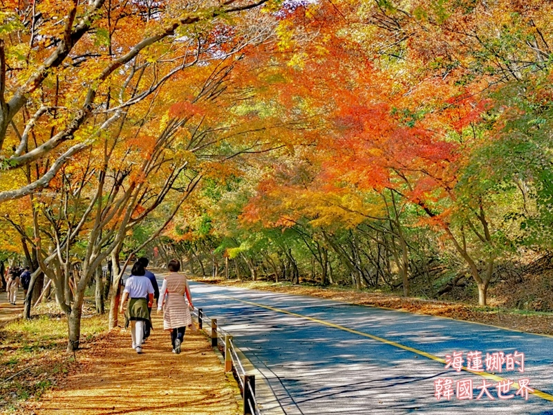 內藏山(釜山出發)-23.jpg