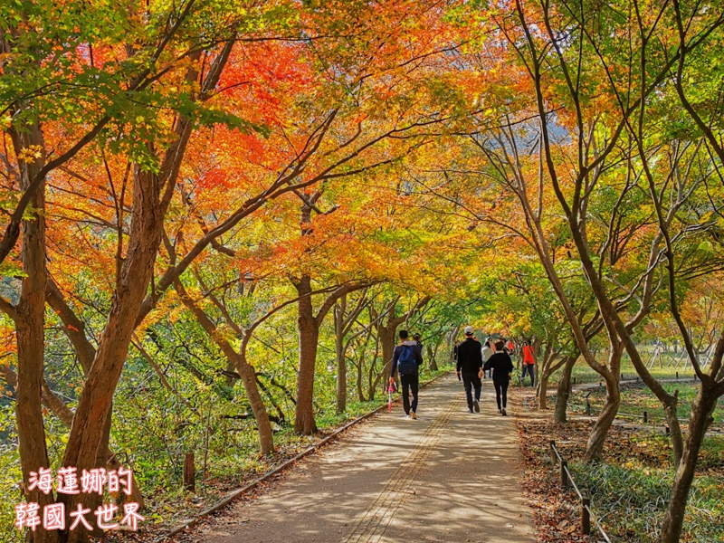 內藏山(釜山出發)-19.jpg