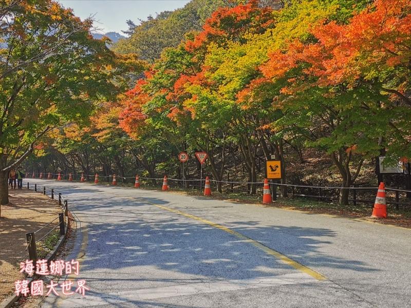 內藏山(釜山出發)-18.jpg