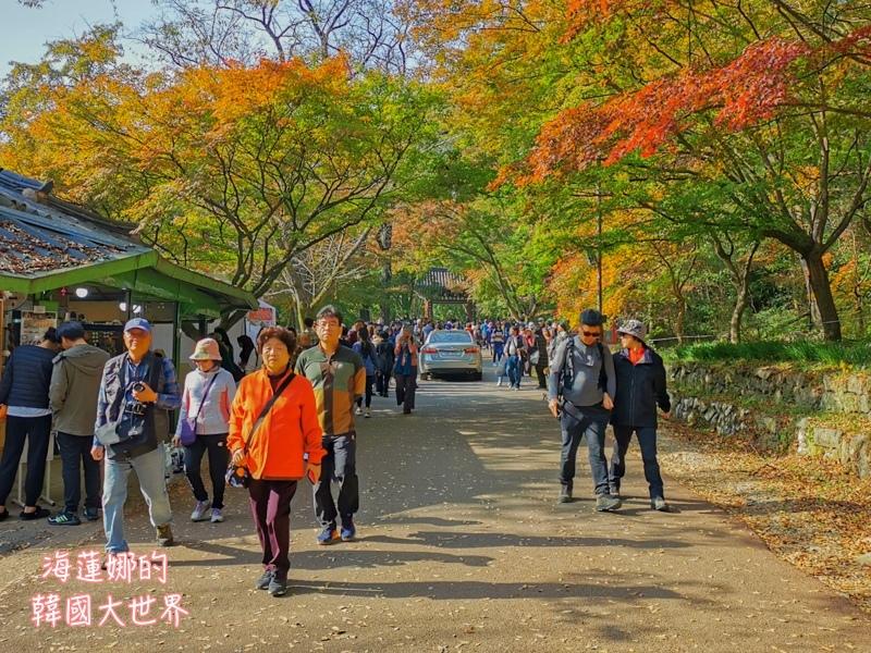 內藏山(釜山出發)-31.jpg