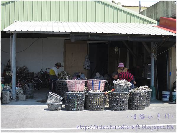 青鯤鯓漁港開鮮蚵