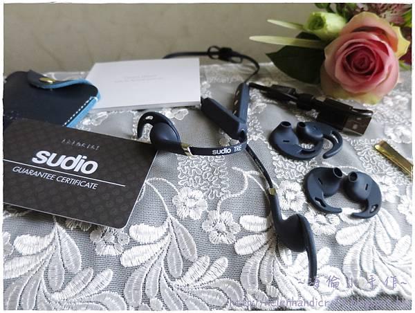 Sudio TRE運動藍芽開放式耳機