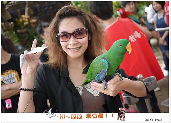 菜瓜很喜歡鳥兒