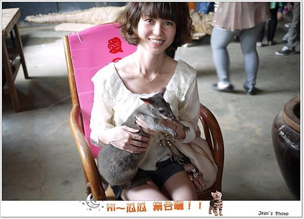 跟袋鼠拍照~~覺得他們好可憐...一天到底要被多少人這樣抱...