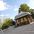 東京清真寺---上2F