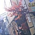 很餓閒晃在長野市區的一群人