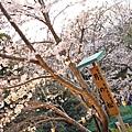 上野清水觀音
