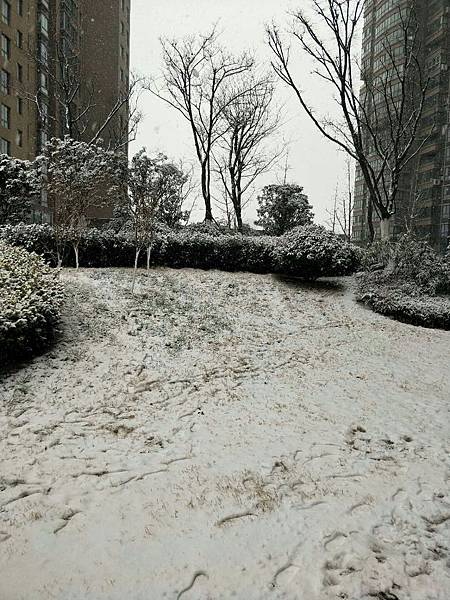 江蘇常熟雪景