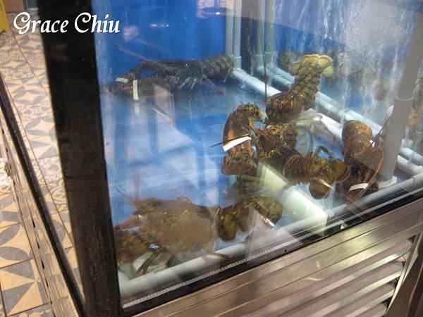 Captain Lobster 龍蝦堡 新光三越 捷運市政府站 信義區