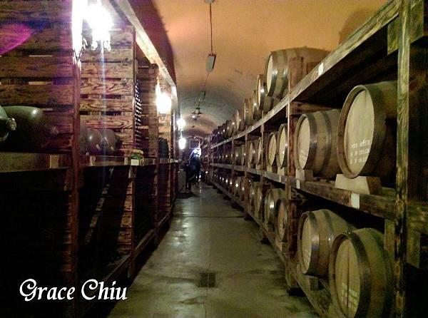 酒窖隧道 韓國山葡萄農園 산머루농원