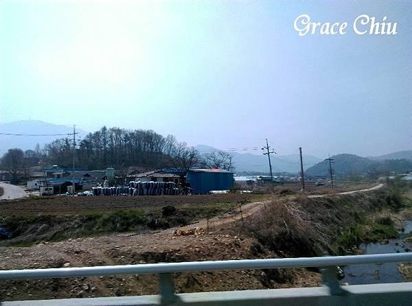 前往韓國山葡萄農園 산머루농원 中