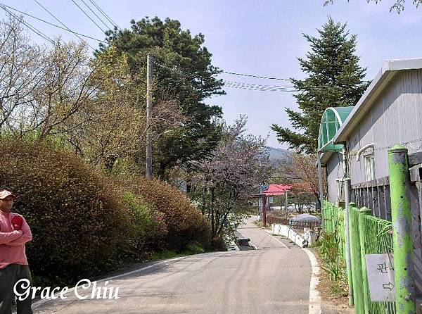산머루농원 韓國山葡萄農園