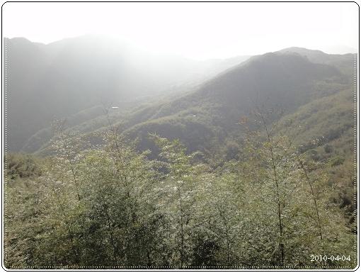 20100404-23.jpg